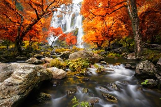 Autumn_dreamstime_xl_46408178